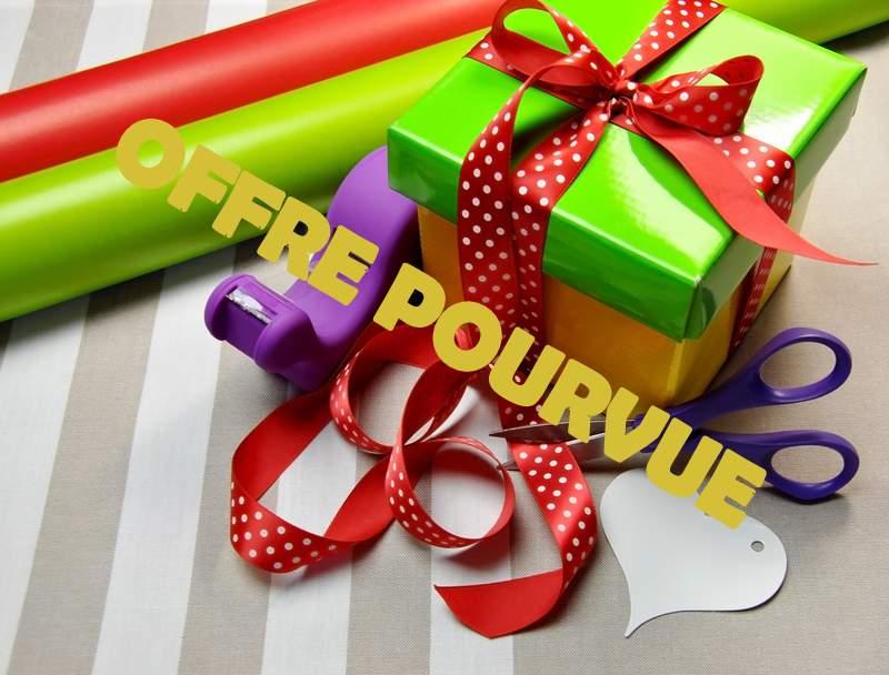 PRO de l'emballage cadeau F/H